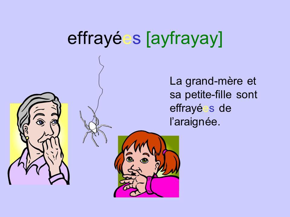 effrayées [ayfrayay] La grand-mère et sa petite-fille sont effrayées de l'araignée.